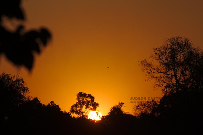Pôr do Sol no Cerrado